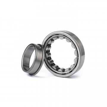 55 mm x 140 mm x 33 mm  FAG NU411-M1 Cylindrical Roller Bearings