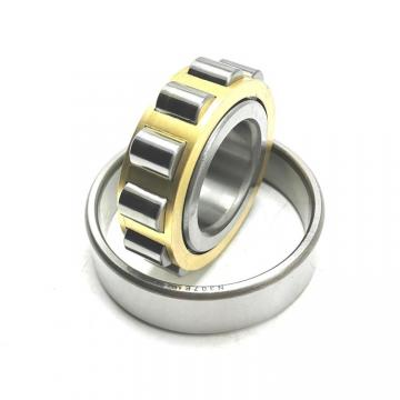 American Roller HCS 309 Cylindrical Roller Bearings