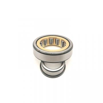 FAG NU1008-M1-C3 Cylindrical Roller Bearings