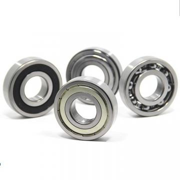American Roller CM 242 Cylindrical Roller Bearings