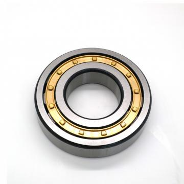 85 mm x 100 mm x 28 mm  SKF NUP 217 ECP/W64 Cylindrical Roller Bearings