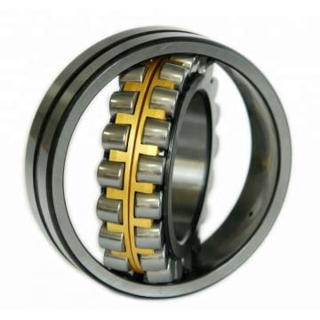 65 mm x 140 mm x 33 mm  FAG N313-E-TVP2 Cylindrical Roller Bearings
